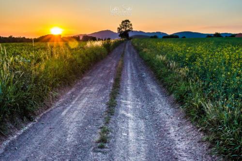 Západ slunce cestou Broumovskem